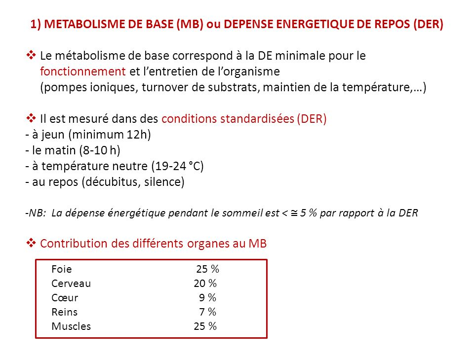 1) METABOLISME DE BASE (MB) ou DEPENSE ENERGETIQUE DE REPOS (DER)
