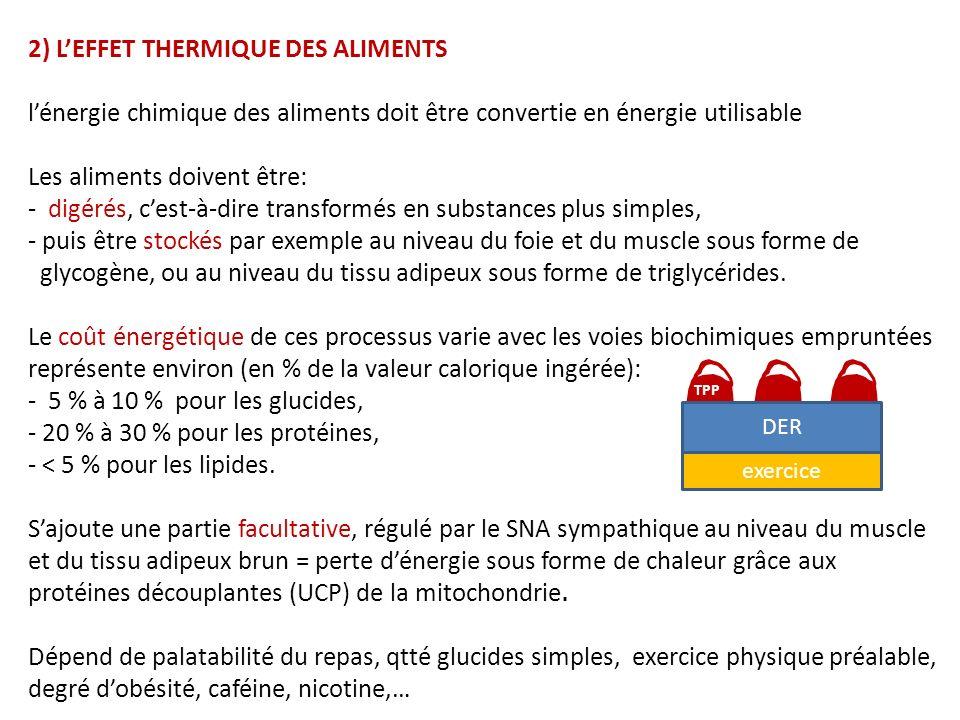2) L'EFFET THERMIQUE DES ALIMENTS