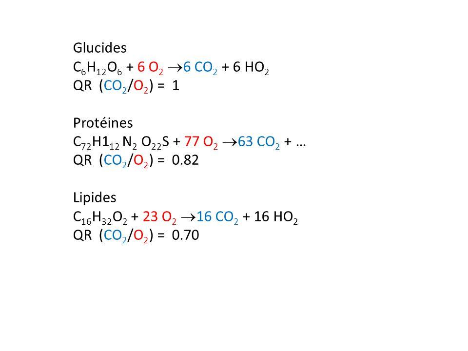 Glucides C6H12O6 + 6 O2 6 CO2 + 6 HO2. QR (CO2/O2) = 1. Protéines. C72H112 N2 O22S + 77 O2 63 CO2 + …