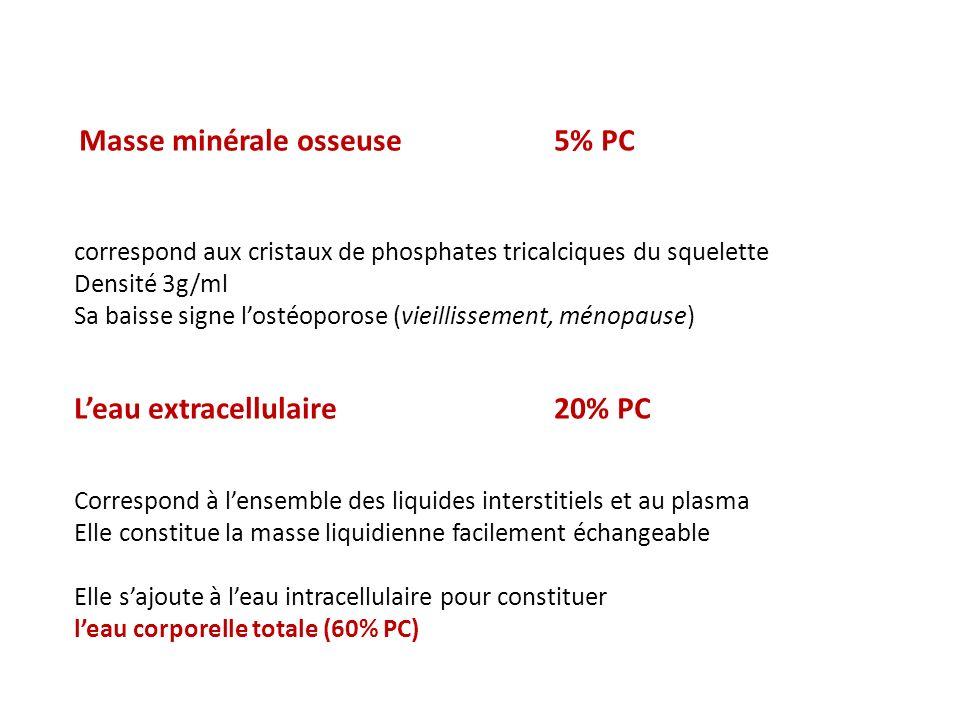 L'eau extracellulaire 20% PC