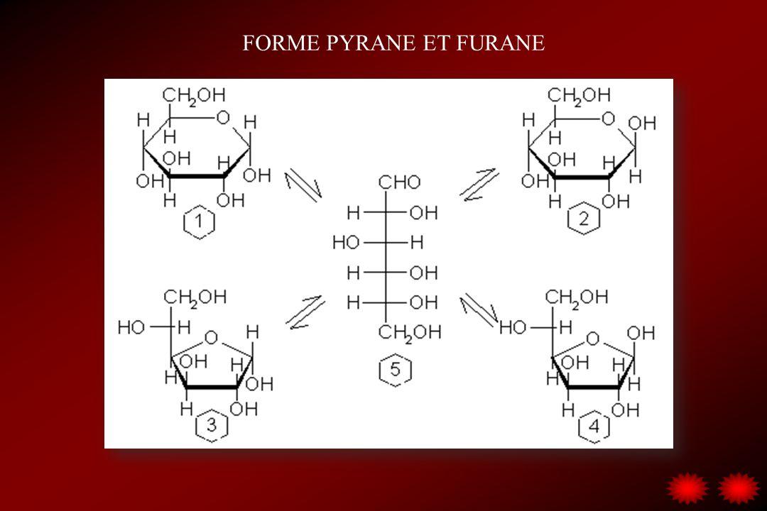 FORME PYRANE ET FURANE Le glucose est plus stable sous la forme pyranose;