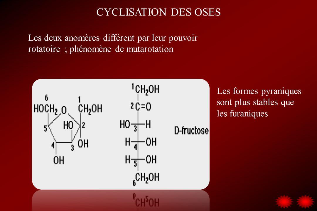 CYCLISATION DES OSES Les deux anomères différent par leur pouvoir rotatoire ; phénomène de mutarotation.