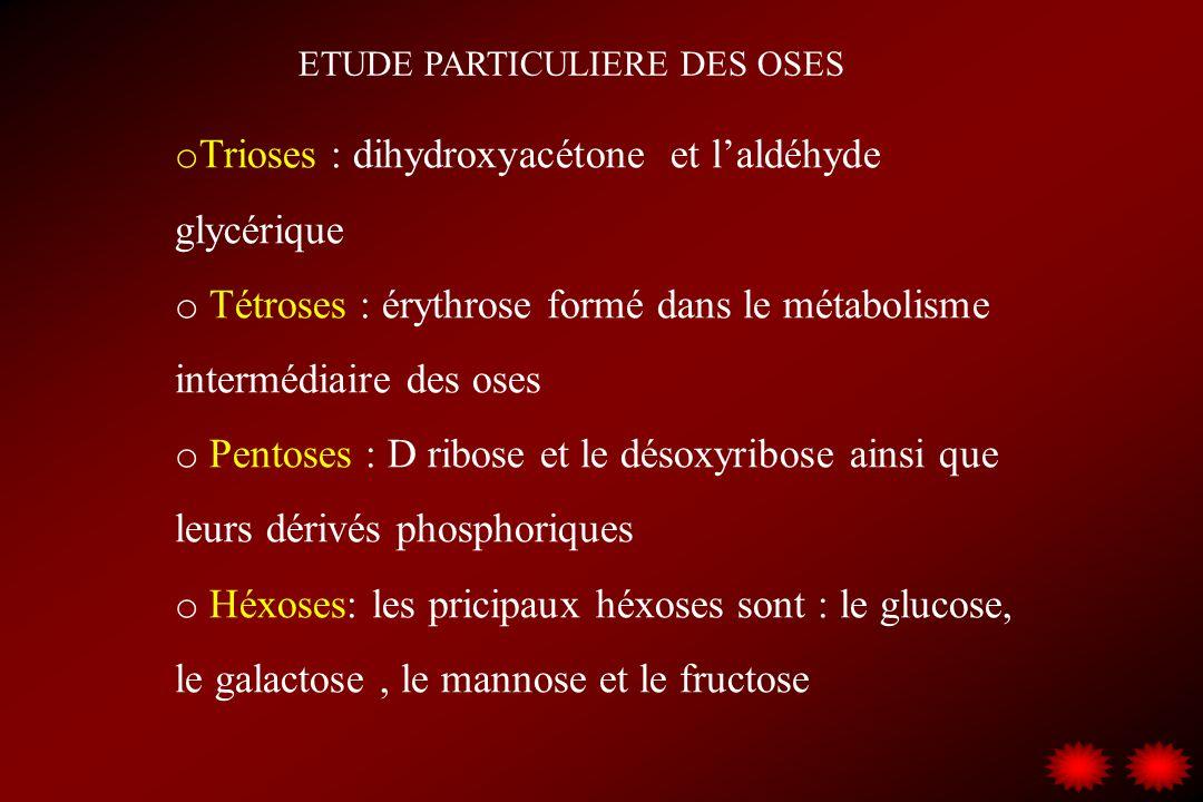 ETUDE PARTICULIERE DES OSES