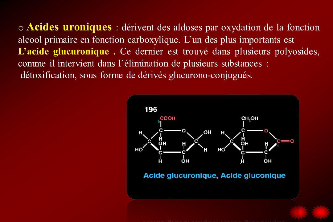 Acides uroniques : dérivent des aldoses par oxydation de la fonction alcool primaire en fonction carboxylique. L'un des plus importants est