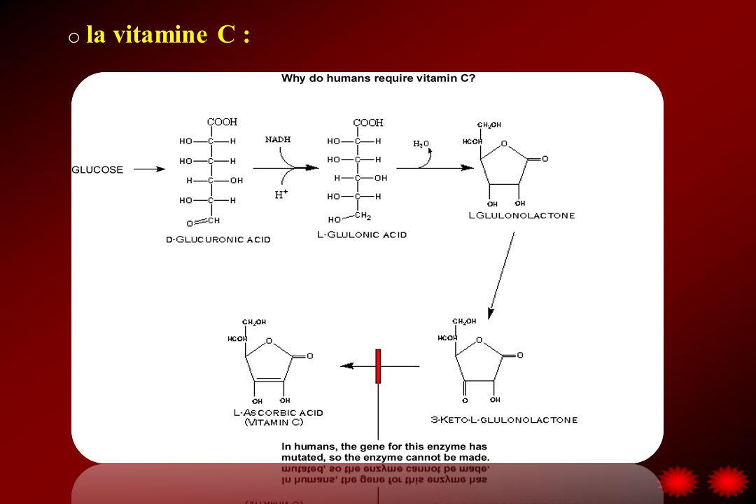 la vitamine C : Vitamine hydrosoluble; seule la forme L est active