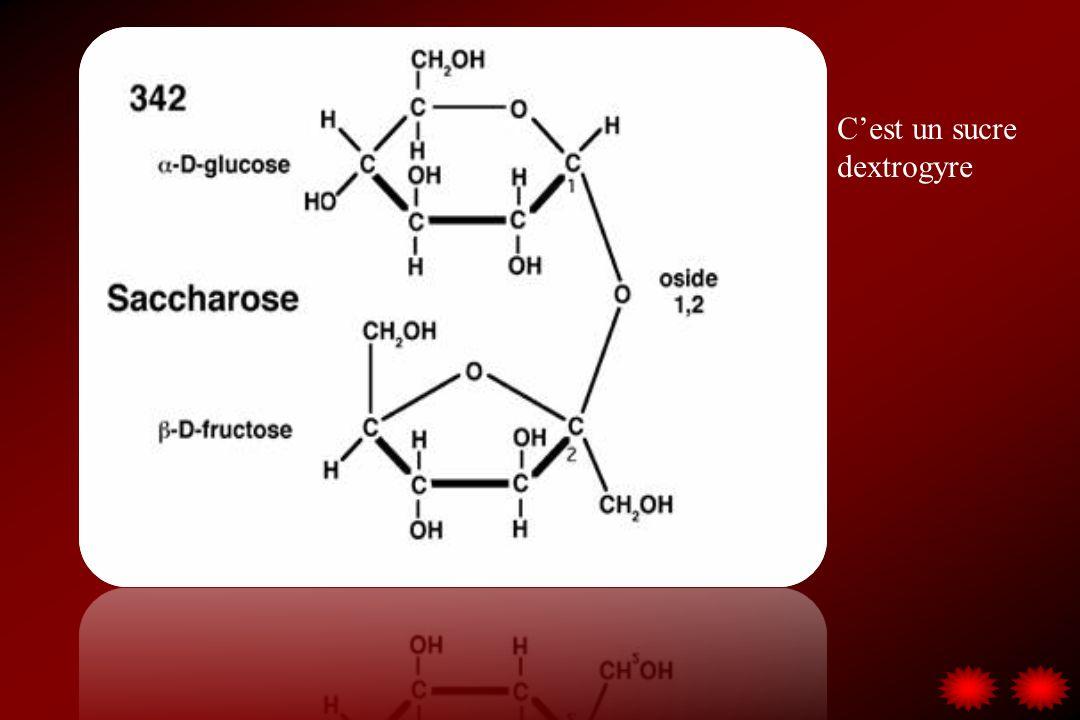 C'est un sucre dextrogyre