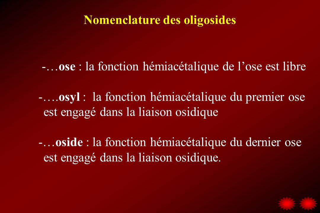 Nomenclature des oligosides