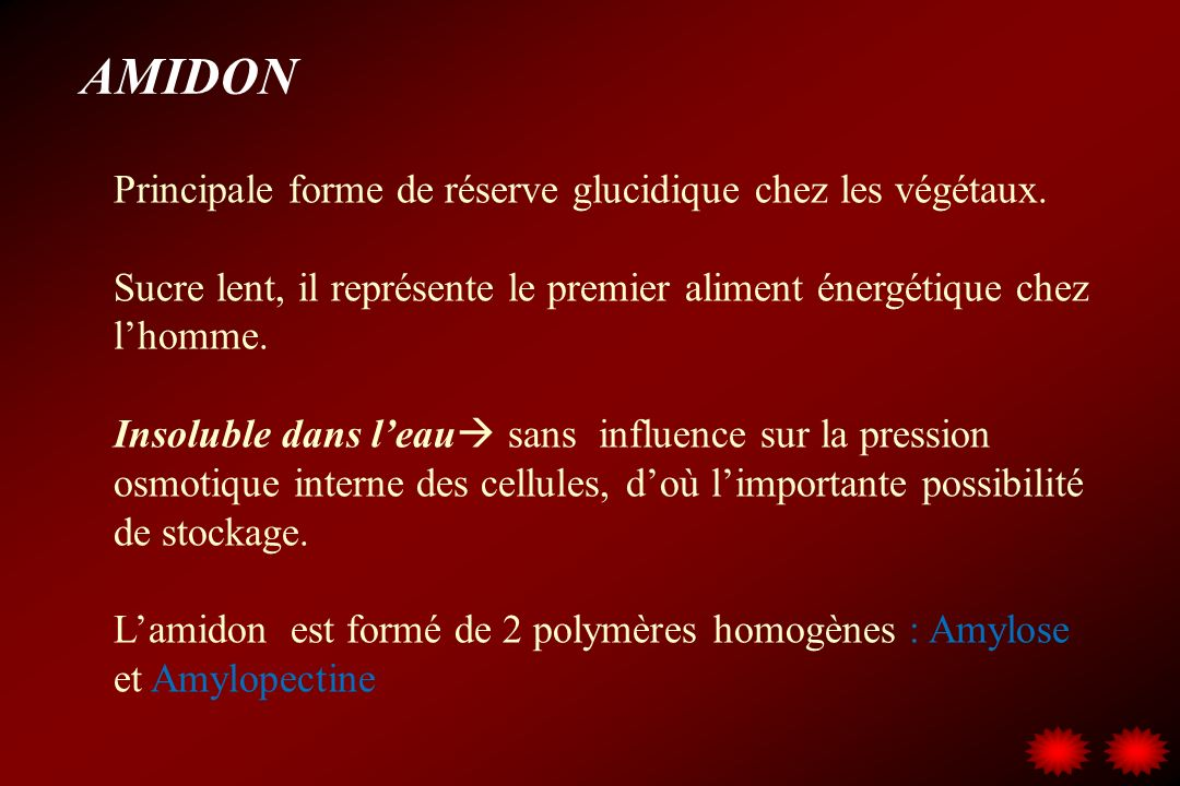 AMIDON Principale forme de réserve glucidique chez les végétaux.