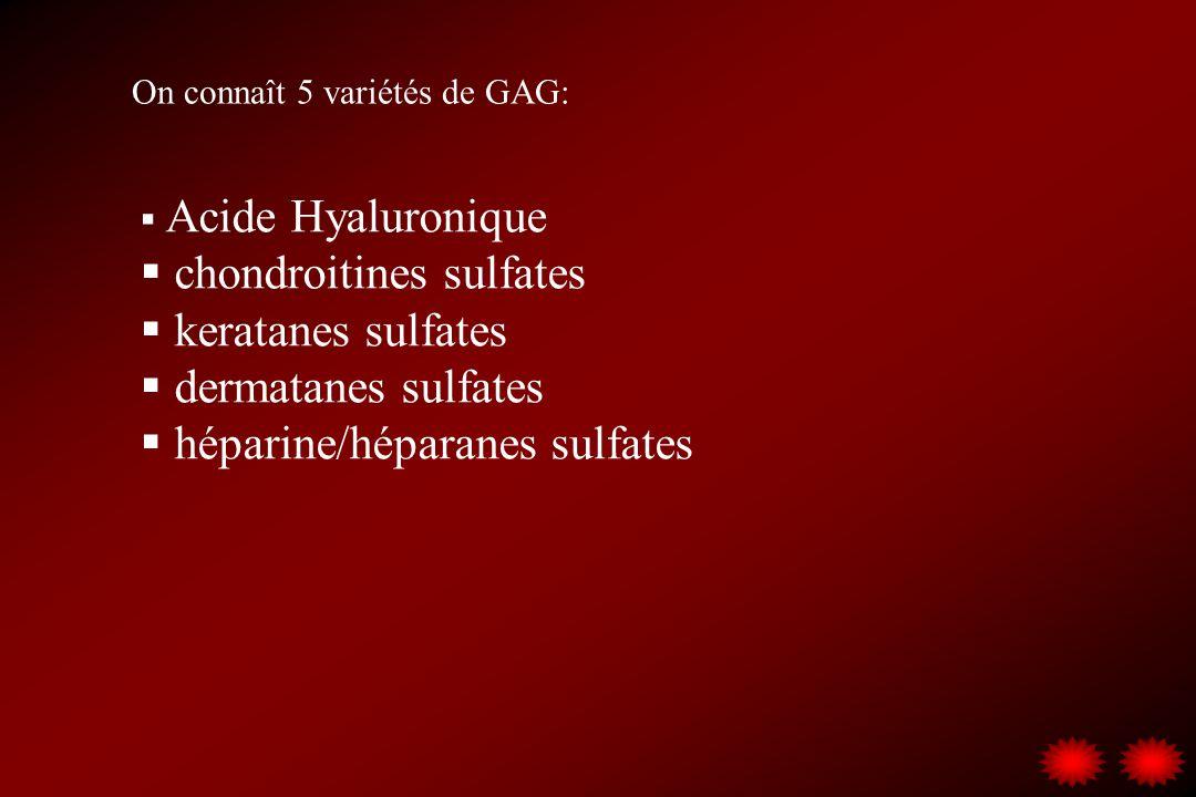 chondroitines sulfates keratanes sulfates dermatanes sulfates