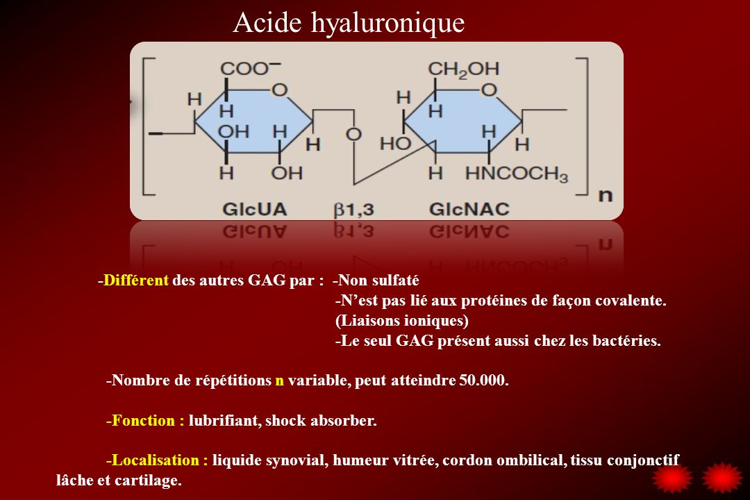 Acide hyaluronique -Différent des autres GAG par : -Non sulfaté