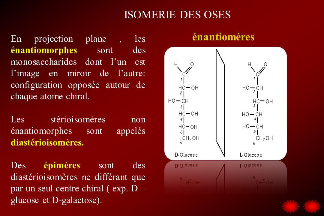 ISOMERIE DES OSES énantiomères