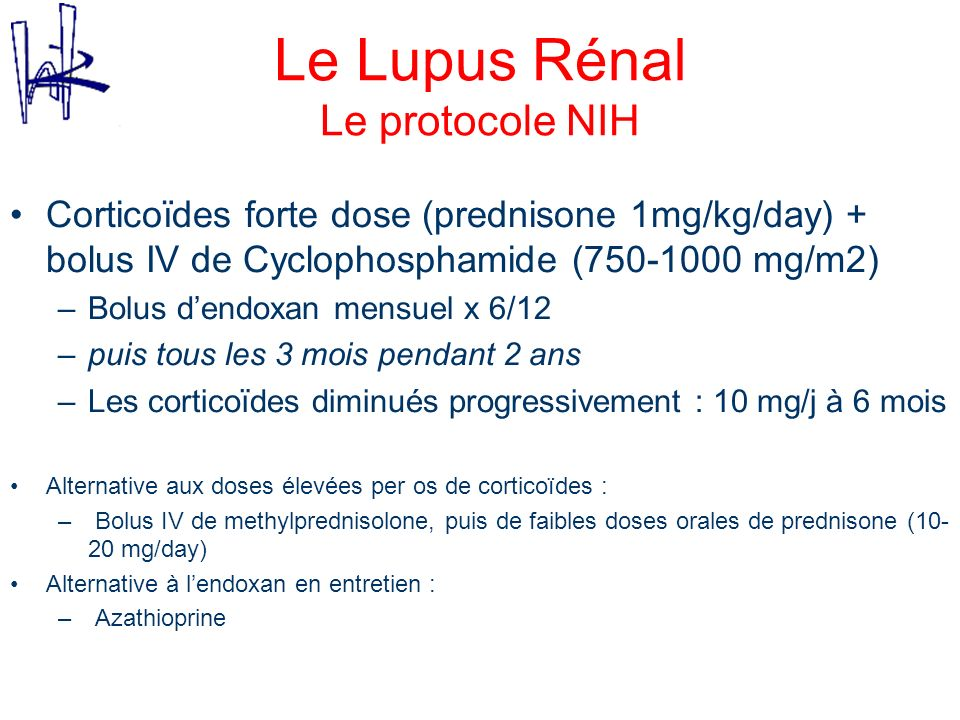 Le Lupus Rénal Le protocole NIH