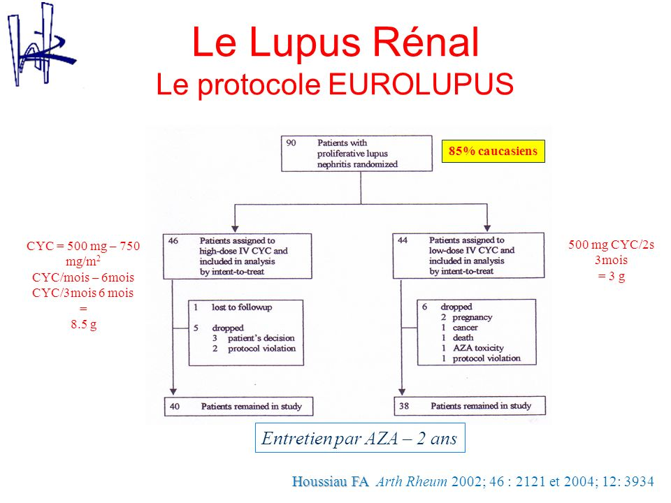 Le Lupus Rénal Le protocole EUROLUPUS