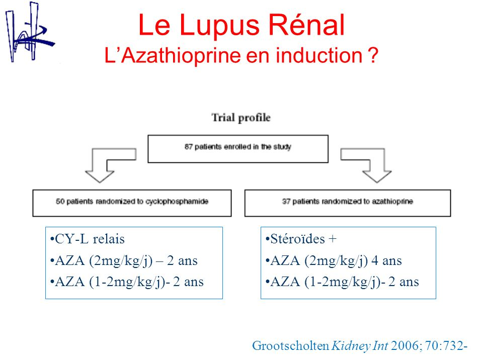 Le Lupus Rénal L'Azathioprine en induction