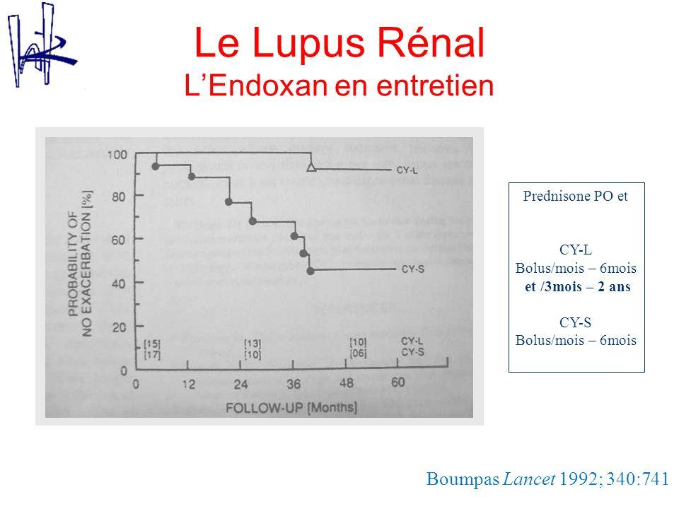 Le Lupus Rénal L'Endoxan en entretien