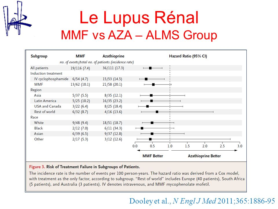 Le Lupus Rénal MMF vs AZA – ALMS Group