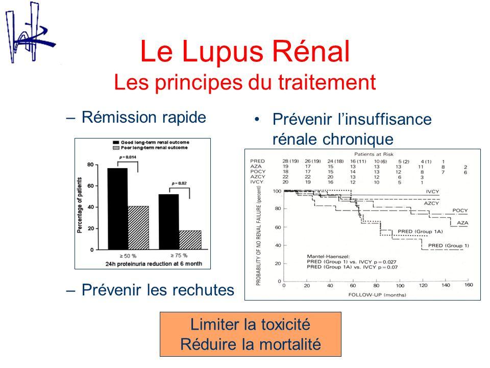 Le Lupus Rénal Les principes du traitement