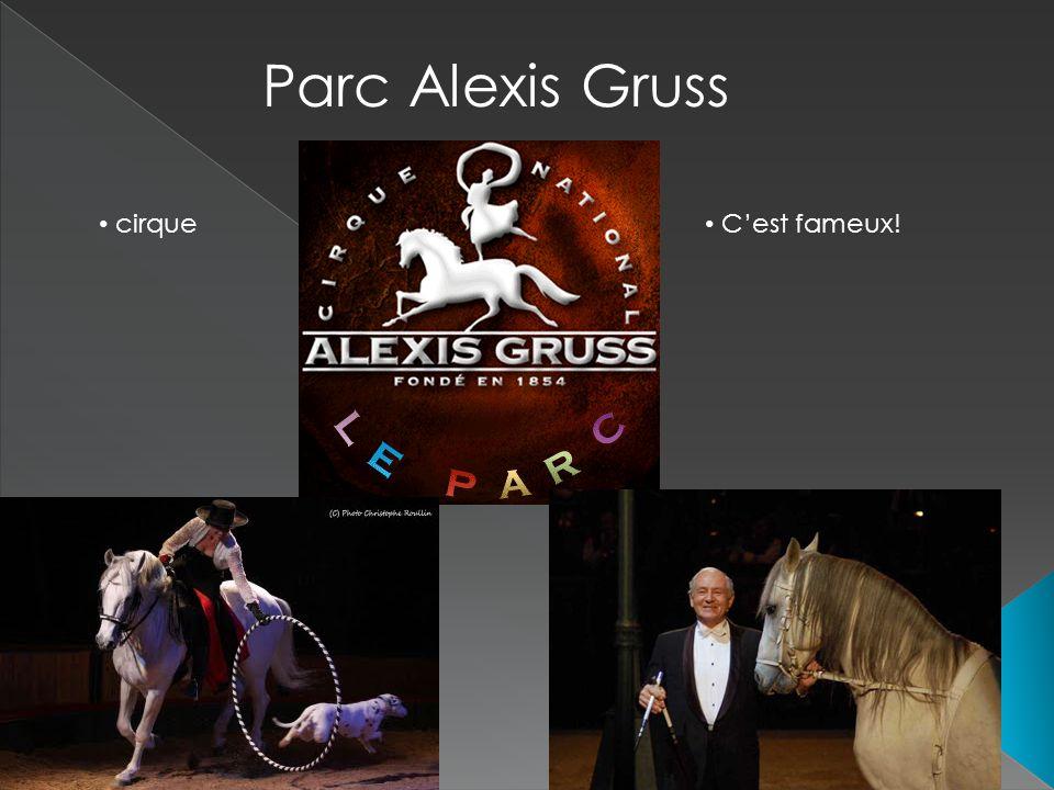 Parc Alexis Gruss cirque C'est fameux!