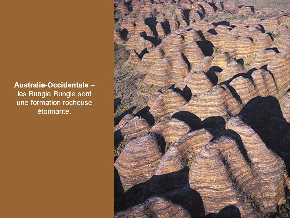 Australie-Occidentale – les Bungle Bungle sont une formation rocheuse étonnante.