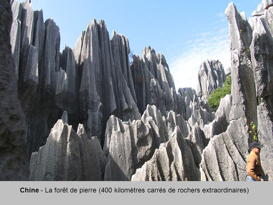 Chine - La forêt de pierre (400 kilomètres carrés de rochers extraordinaires)