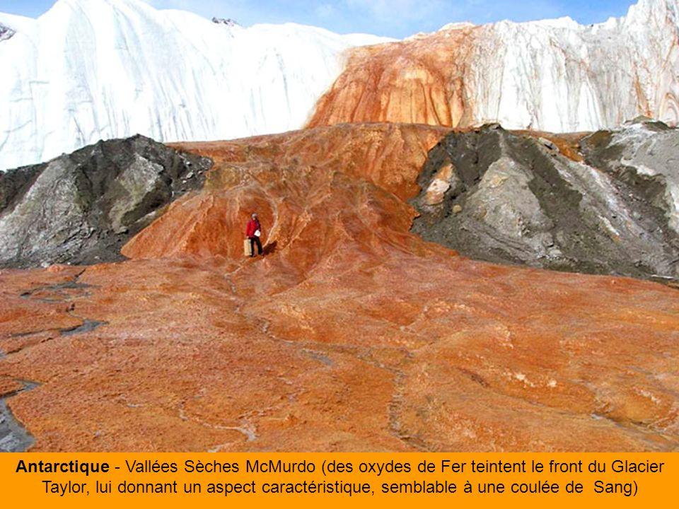 Antarctique - Vallées Sèches McMurdo (des oxydes de Fer teintent le front du Glacier Taylor, lui donnant un aspect caractéristique, semblable à une coulée de Sang)