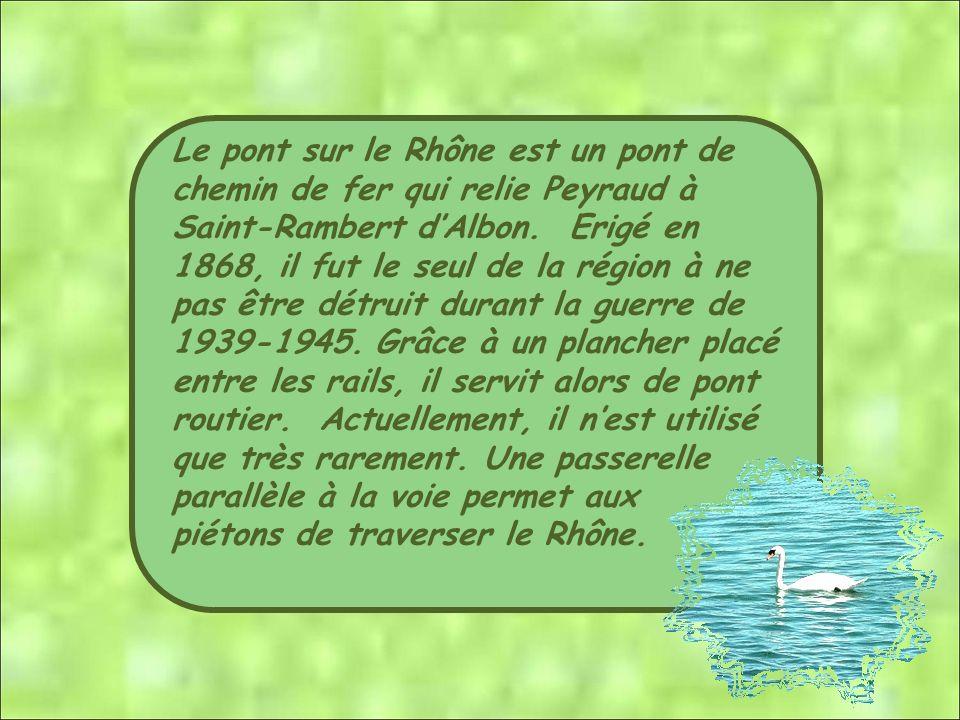 Le pont sur le Rhône est un pont de chemin de fer qui relie Peyraud à Saint-Rambert d'Albon. Erigé en 1868, il fut le seul de la région à ne pas être détruit durant la guerre de 1939-1945. Grâce à un plancher placé entre les rails, il servit alors de pont routier. Actuellement, il n'est utilisé que très rarement. Une passerelle