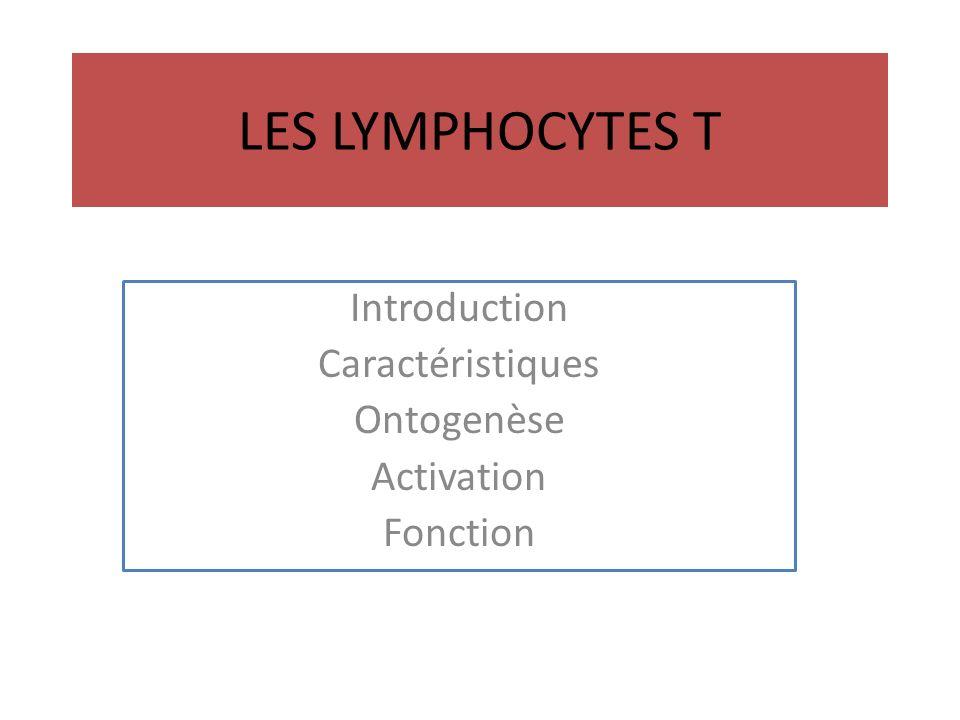 Introduction Caractéristiques Ontogenèse Activation Fonction