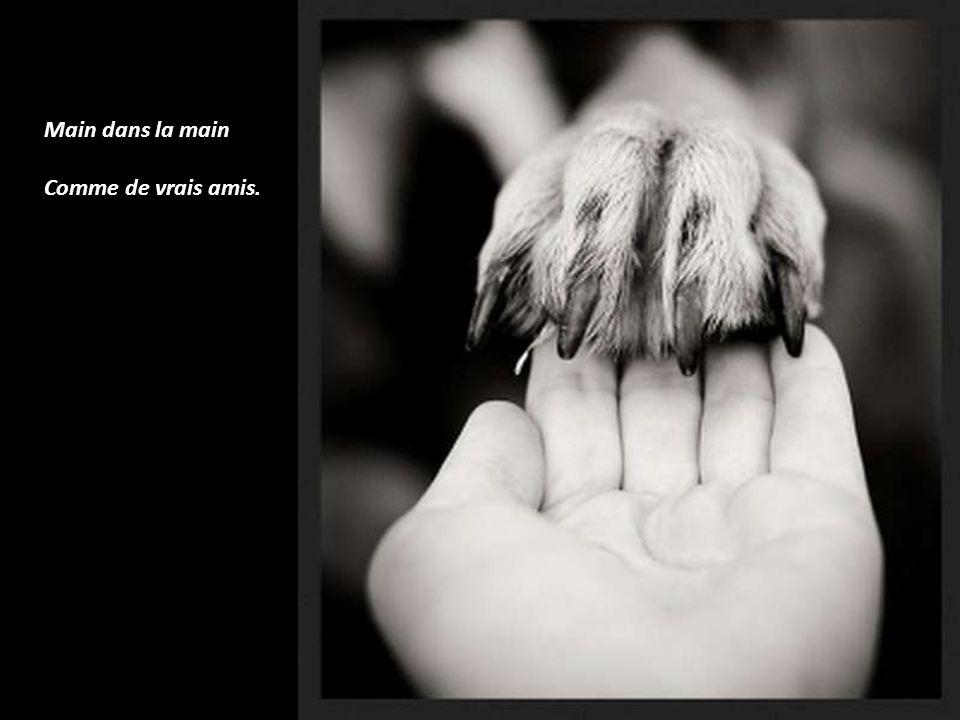 Main dans la main Comme de vrais amis.