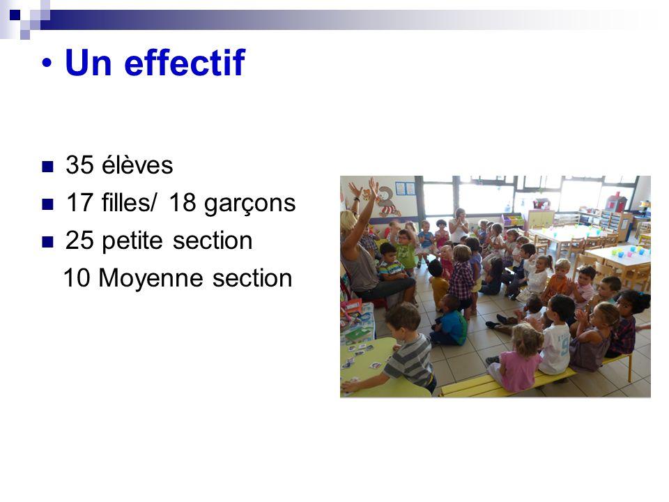 Un effectif 35 élèves 17 filles/ 18 garçons 25 petite section