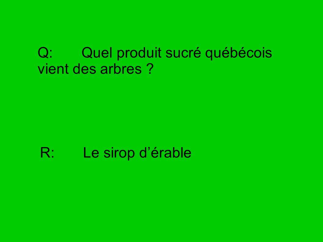 Q: Quel produit sucré québécois vient des arbres