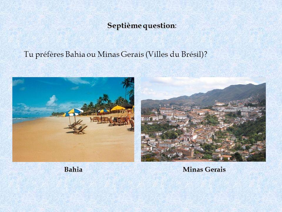 Tu préfères Bahia ou Minas Gerais (Villes du Brésil)