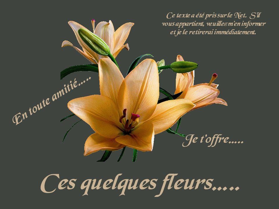 Ces quelques fleurs….. En toute amitié….. Je t'offre…..