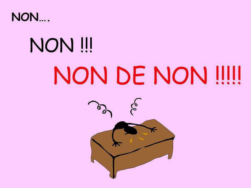 NON…. NON !!! NON DE NON !!!!!