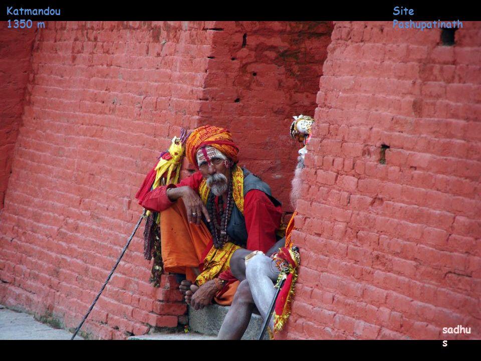 Katmandou 1350 m Site Pashupatinath sadhus
