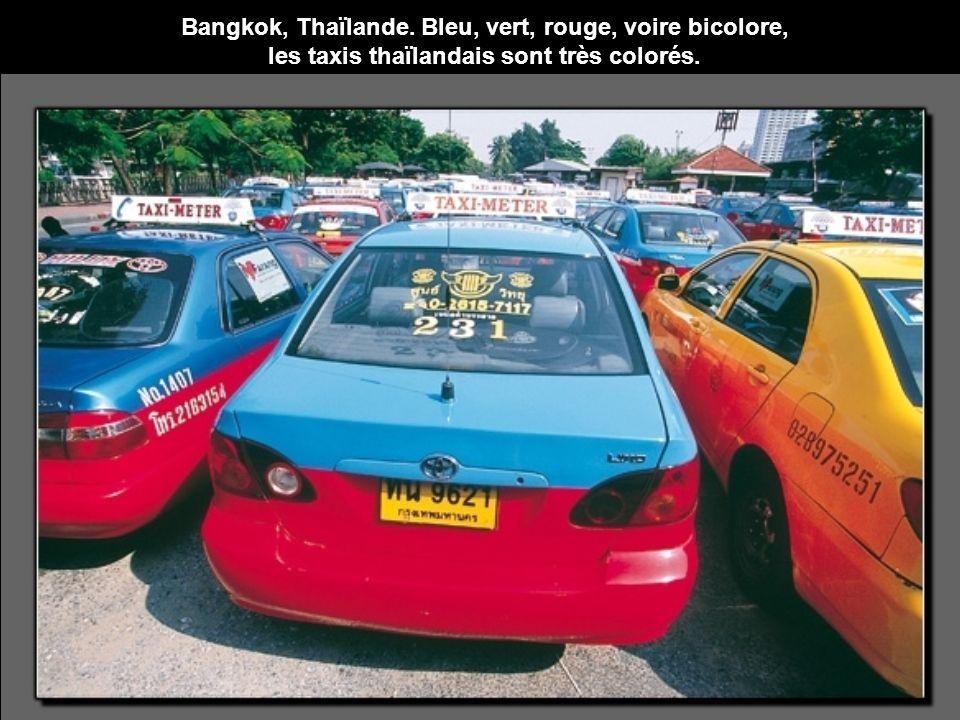 Bangkok, Thaïlande. Bleu, vert, rouge, voire bicolore,