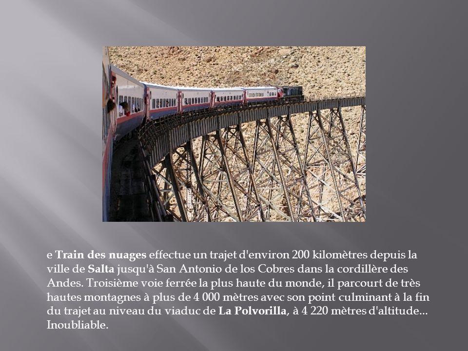 e Train des nuages effectue un trajet d environ 200 kilomètres depuis la ville de Salta jusqu à San Antonio de los Cobres dans la cordillère des Andes.