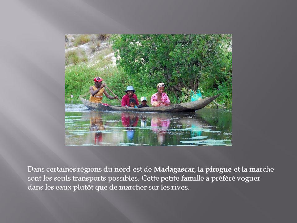 Dans certaines régions du nord-est de Madagascar, la pirogue et la marche sont les seuls transports possibles.