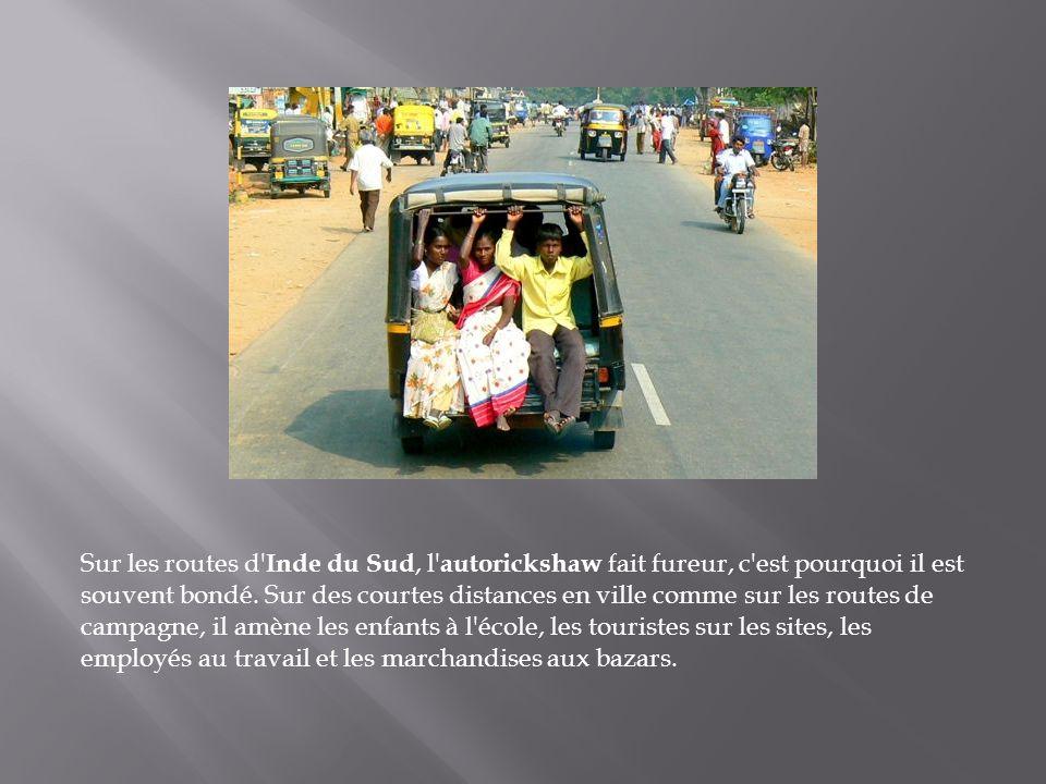 Sur les routes d Inde du Sud, l autorickshaw fait fureur, c est pourquoi il est souvent bondé.