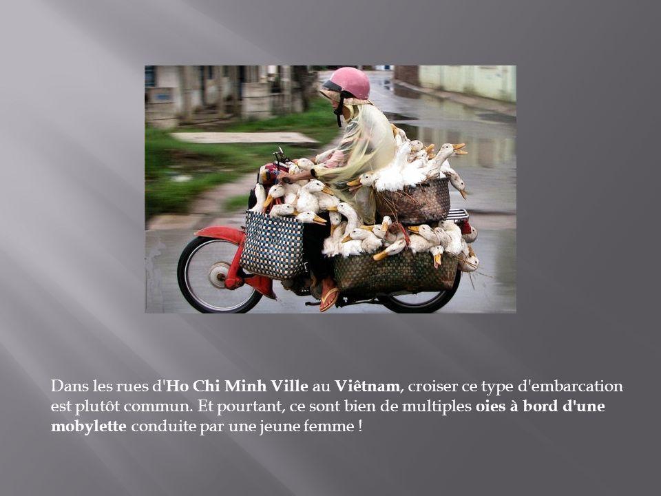 Dans les rues d Ho Chi Minh Ville au Viêtnam, croiser ce type d embarcation est plutôt commun.