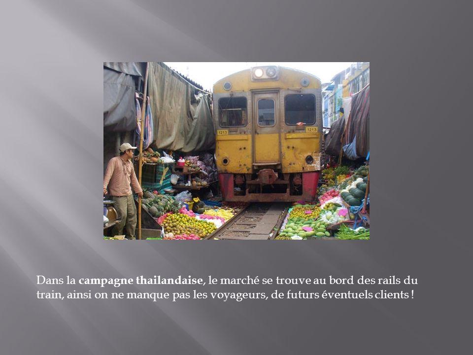 Dans la campagne thailandaise, le marché se trouve au bord des rails du train, ainsi on ne manque pas les voyageurs, de futurs éventuels clients !