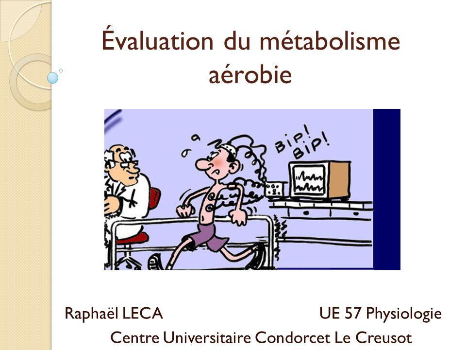 Évaluation du métabolisme aérobie