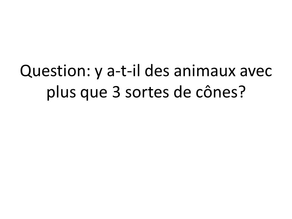 Question: y a-t-il des animaux avec plus que 3 sortes de cônes