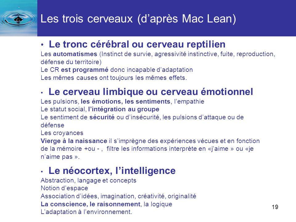 Les trois cerveaux (d'après Mac Lean)