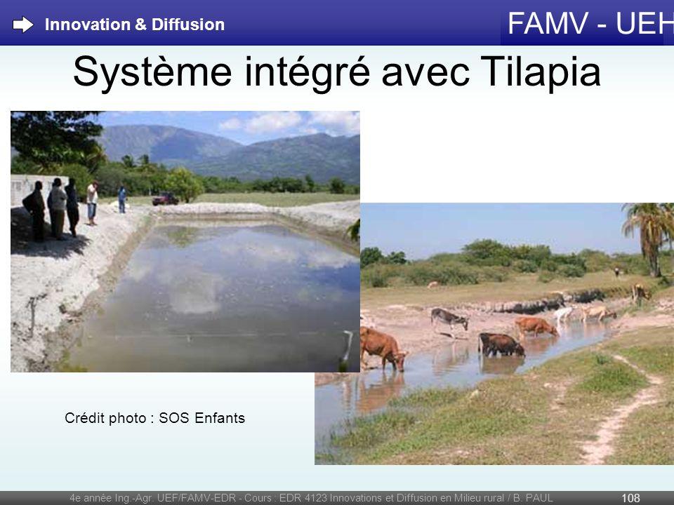 Système intégré avec Tilapia