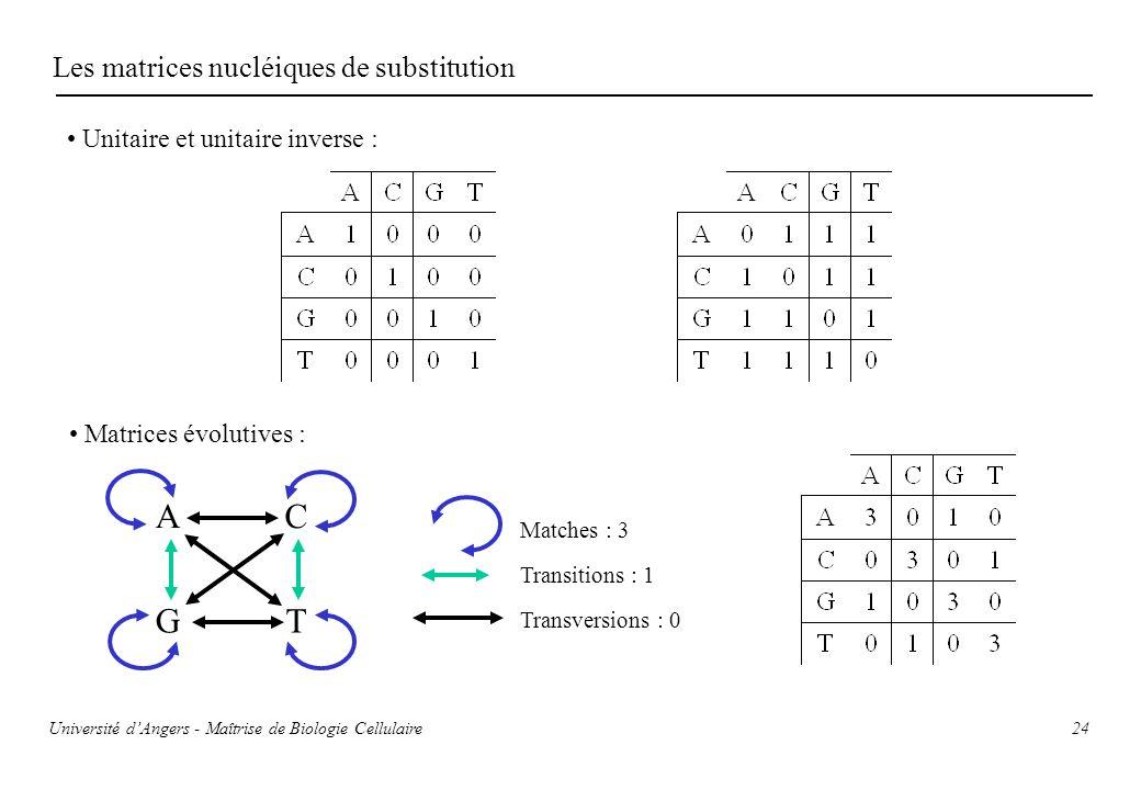 A T G C Les matrices nucléiques de substitution