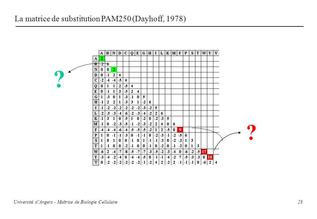 La matrice de substitution PAM250 (Dayhoff, 1978)