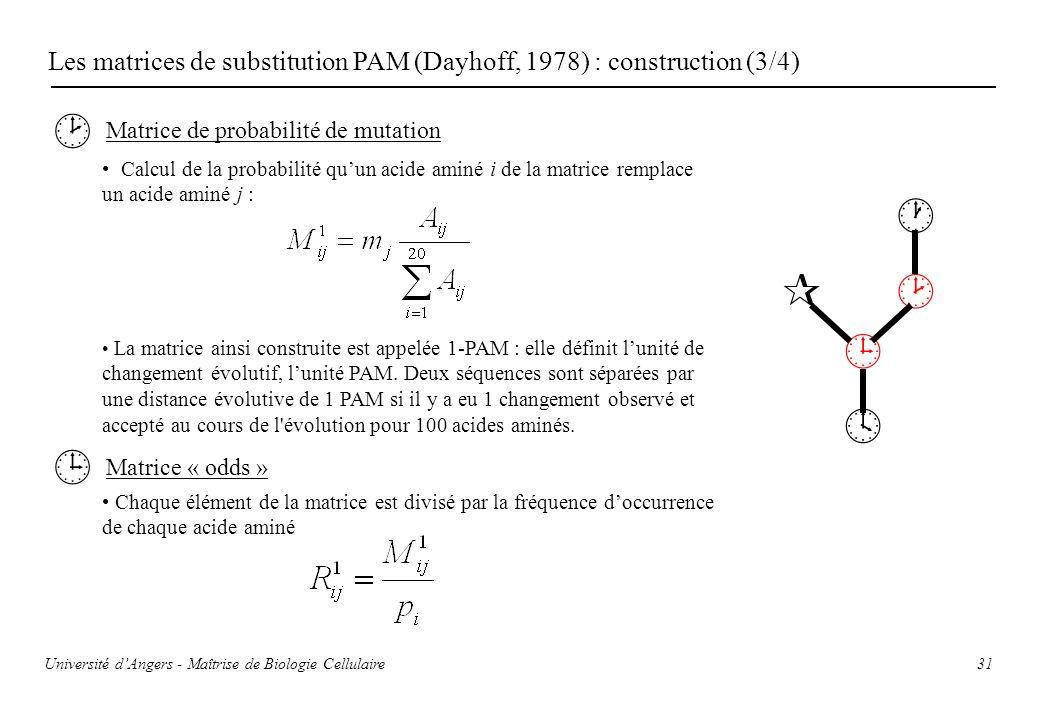Les matrices de substitution PAM (Dayhoff, 1978) : construction (3/4)