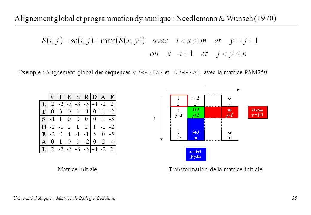 Alignement global et programmation dynamique : Needlemann & Wunsch (1970)