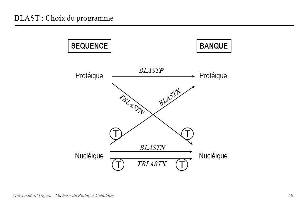 T T T T BLAST : Choix du programme SEQUENCE BANQUE Protéique Protéique