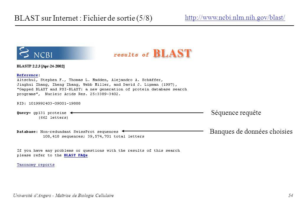 BLAST sur Internet : Fichier de sortie (5/8)